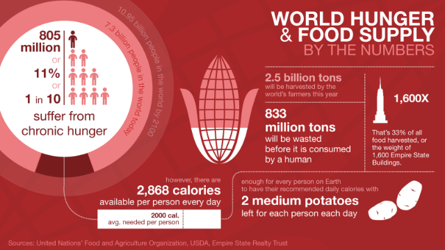 world hunger and food waste stats